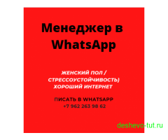Менеджер WhatsApp (дистанционно)